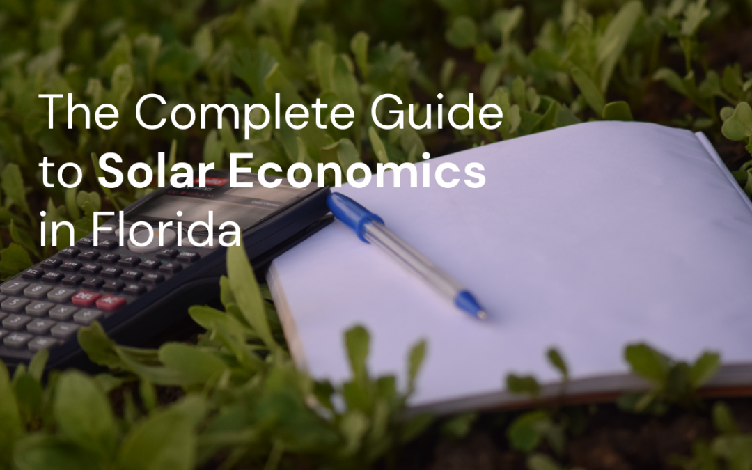 The Complete Guide to Solar Economics in Florida